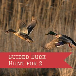 2 Person Guided Hunt Trip
