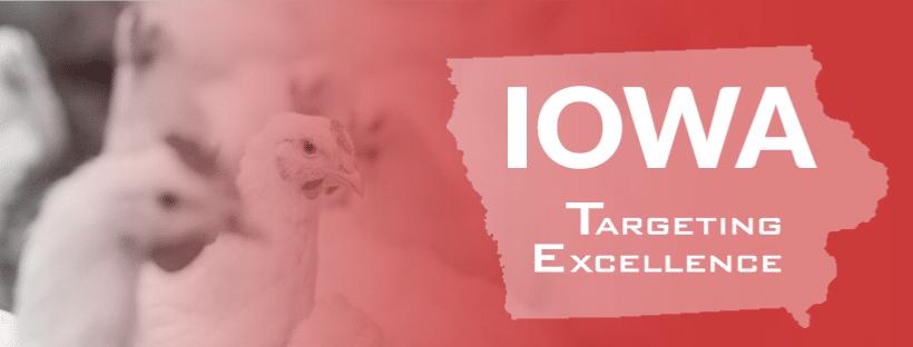 IA Chicken