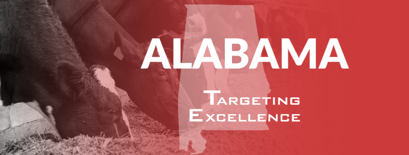 Alabama Targeting Excellence Cow Banner