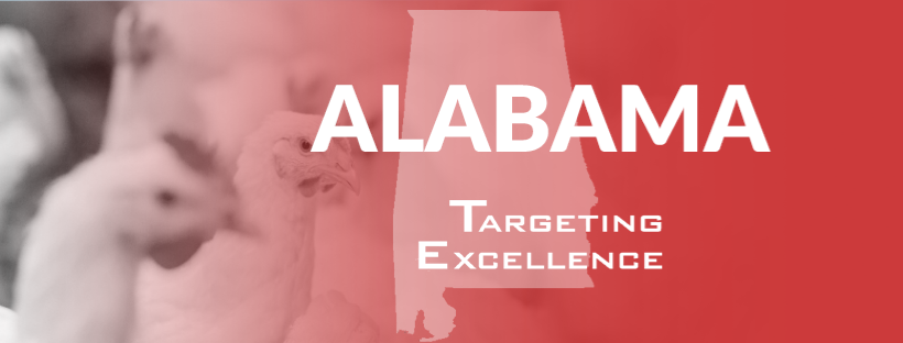 Alabama Targeting Excellence Chicken Banner